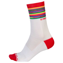 Endura Pinstripe Limited Edition socks 2018