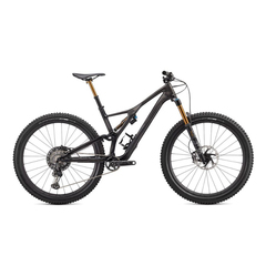 Specialized S-Works Stumpjumper Carbon 29 bicycle 2020